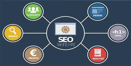 Online SEO consultancy servies