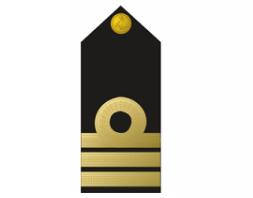 Nigerian Navy Commander badge / Insignia