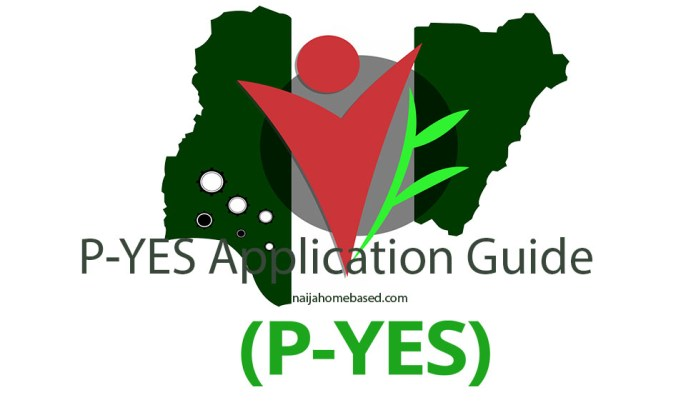 pyes application guide and registration portal