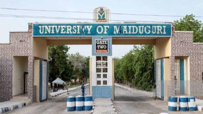 University of Maiduguri School Gate