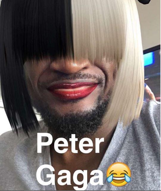 peter-NL1