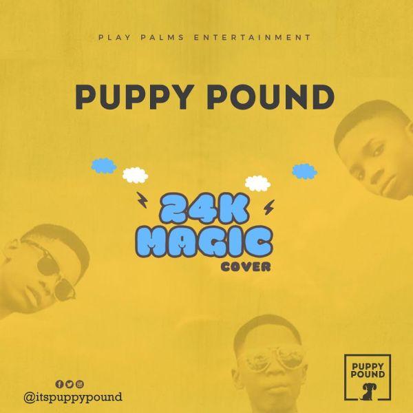 puppy pound