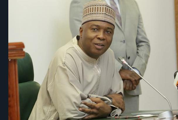 Trouble For Saraki As Newly Elected APC Senators Vow To Probe Him