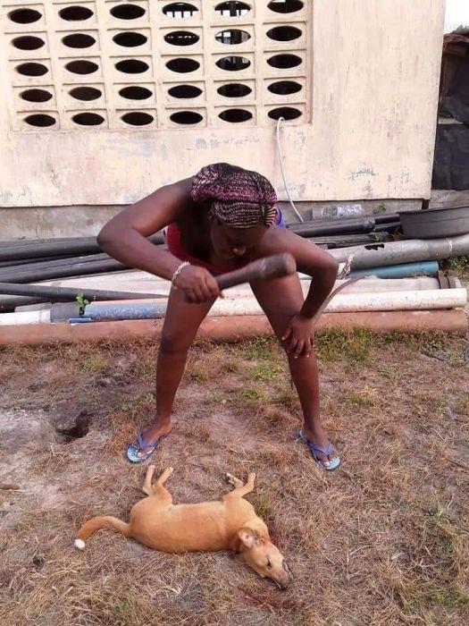 MAD O!! Beautiful Calabar Lady Spotted Killing & Roasting A Dog (See Photos) 1