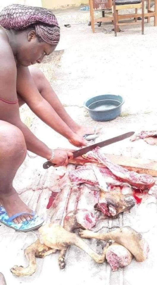 MAD O!! Beautiful Calabar Lady Spotted Killing & Roasting A Dog (See Photos) 4