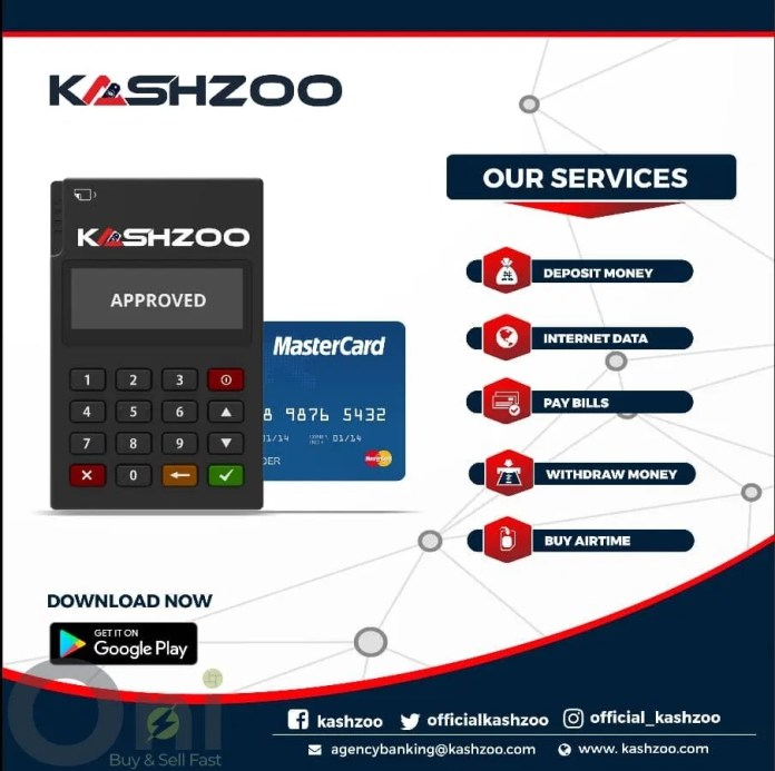 kashzoo review
