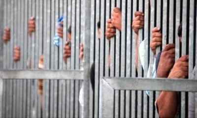 1,000 Ethiopian Prisoners Released From Saudi Arabia