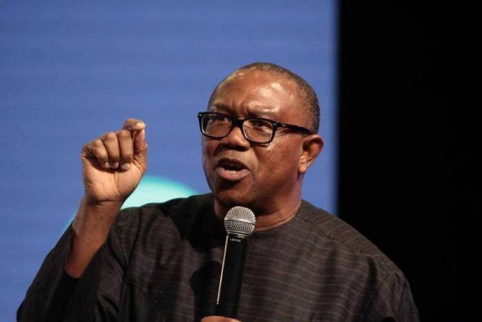 2023: Igbos Should Convince Nigeria Why They Want To Suceed Buhari - Obi