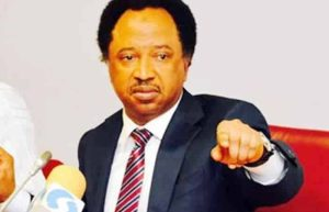 Shehu Sani Sends Message To Arthur Eze Over Comment On The North