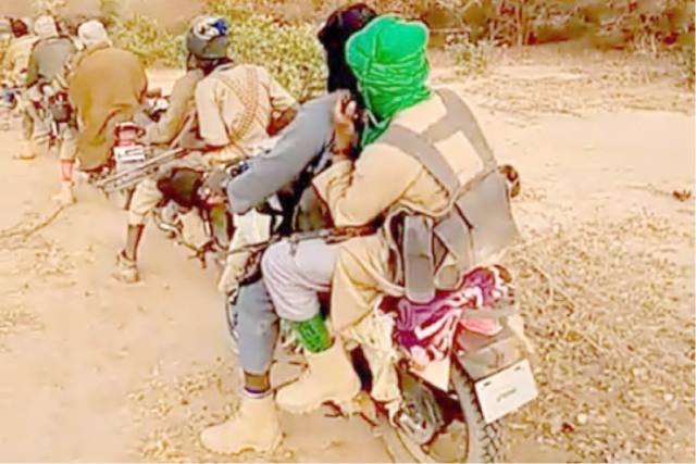Boko Haram Insurgents, Bandits Have Occupied Nigeria's Forest Reserves - Official | Naija News