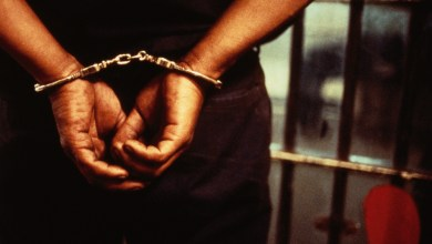 Police arrest pastor, prophet, 14 others For Killing security operatives - Naija News 247