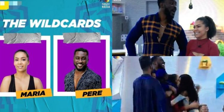 #BBNaija Wildcards: See reactions the moment Ebuka revealed the actual wildcards to housemates (Video) - Naija News 247
