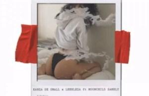 Kabza De Small x Leehleza – Ur Sheetee ft. Moonchild Sanelly