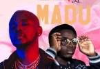 Kizz Daniel – Madu (Remix) ft. 2Free