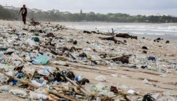 Environmental pollution-A detriment to a healthy society
