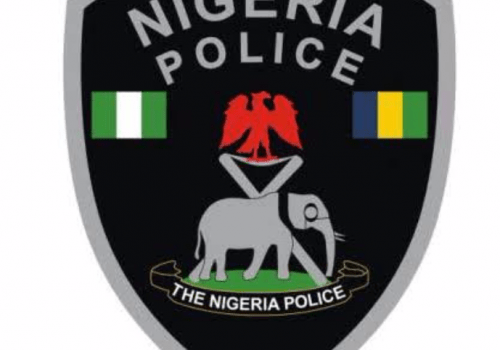 Police Receive List Of Animals To Sacrifice For Detaining Edo Chief Priest
