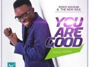 DOWNLOAD: Ifeanyi Amunuba & The New Soul – You Are Good