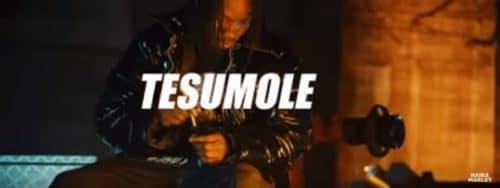 [Video] Naira Marley – Tesumole