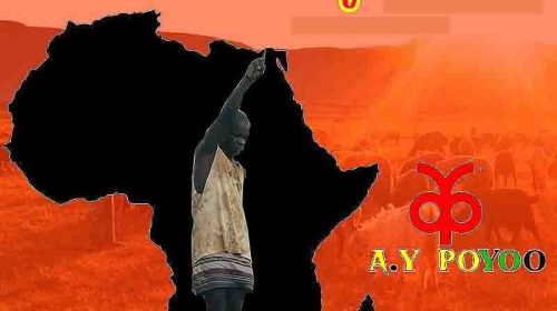 DOWNLOAD MP3: Washout Africa (Shout Out Africa)