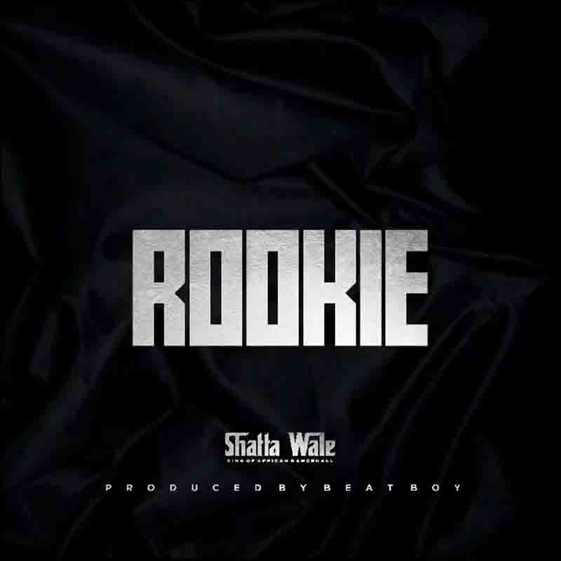 DOWNLOAD MP3: Shatta Wale - Rookie