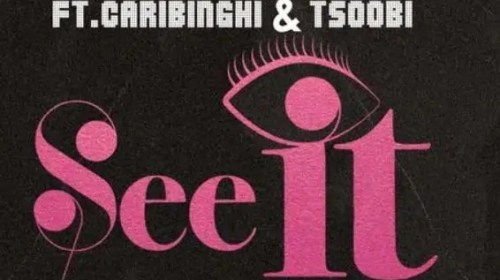 DOWNLOAD MP3: Awaga Ft Caribinghi & Tsoobi – See It