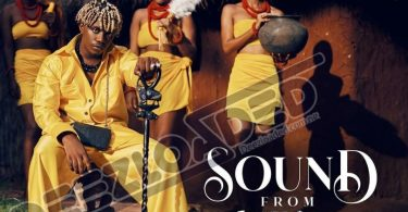 Rayvanny – Sound from Africa Full Album & [Zip File] 9