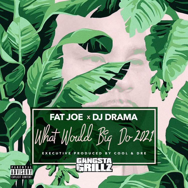 Fat Joe What Would Big Do