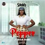 Sefa ft. Bisa Kdei – Pepper (prod. by Danny Beatz)