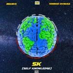 BBanks ft. Temmie Ovwasa – Self Knowledge (SK)