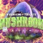 Rygin king – Too Late