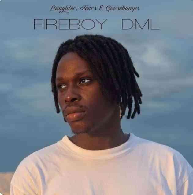 Fireboy DML - Vibration Mp3 Audio Download