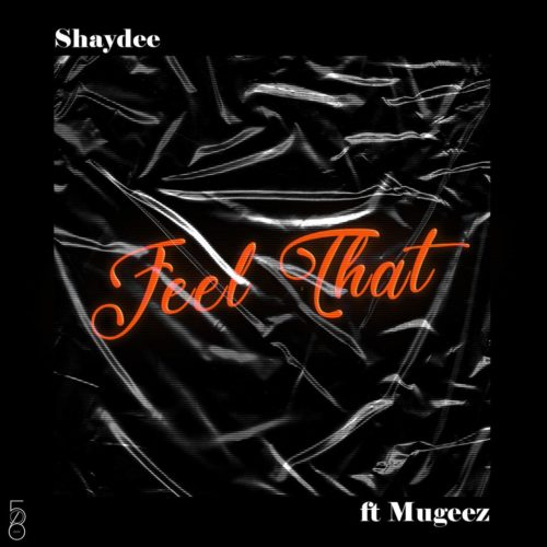 Shaydee Ft. Mugeez (R2Bees) - Feel That Mp3 Audio Download