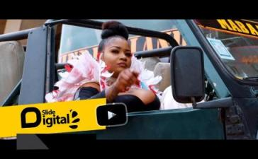 Shilole - Pindua Meza (Audio + Video) Mp3 Mp4 Download