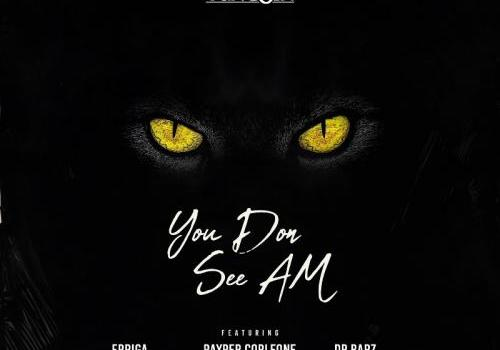 Yung6ix - You Don See Am Ft. Erigga, Payper Corleone, Dr Barz Mp3 Audio Download