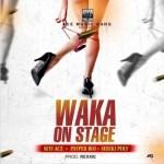 Seyi Ace Ft. Seriki Poly & Payper Boi – Waka On Stage (Audio + Video)