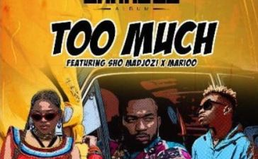 RJ The DJ - Too Much Ft. Sho Madjozi, Marioo Mp3 Audio Download