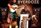 ALBUM: Lvovo & Danger - Sghubu Overdoze