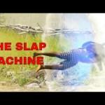 Video: Xploit Comedy – The Slap Machine