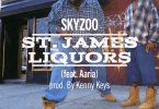 "Skyzoo Ft. Aaria – ""St. James Liquors"