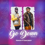 Tehkay Ft. Dandizzy – Go Down (Remix)