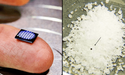 IBM Just Unveiled The World's Smallest Computer And It's Smaller Than A Grain Of Salt - Photo 1