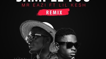 Mr Eazi Sample You Remix