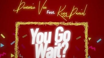 Demmie Vee You Go Wait Artwork