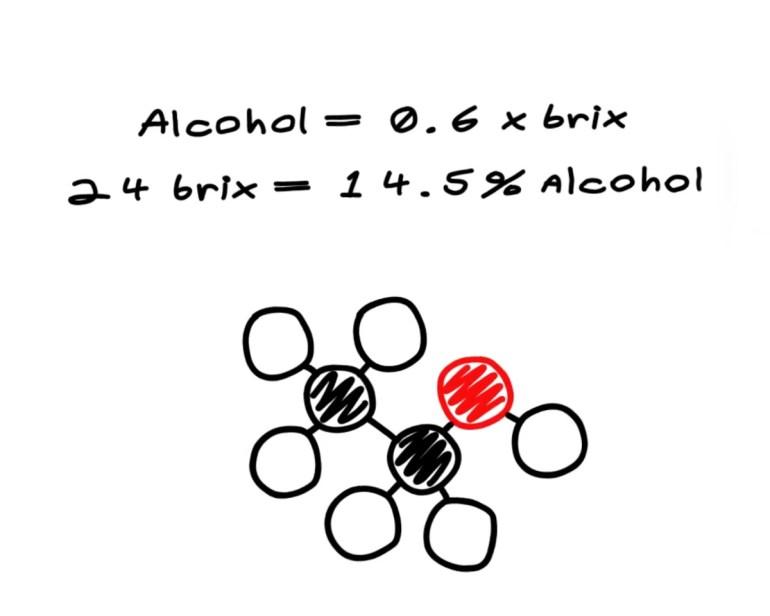 brix-alcohol-calculation