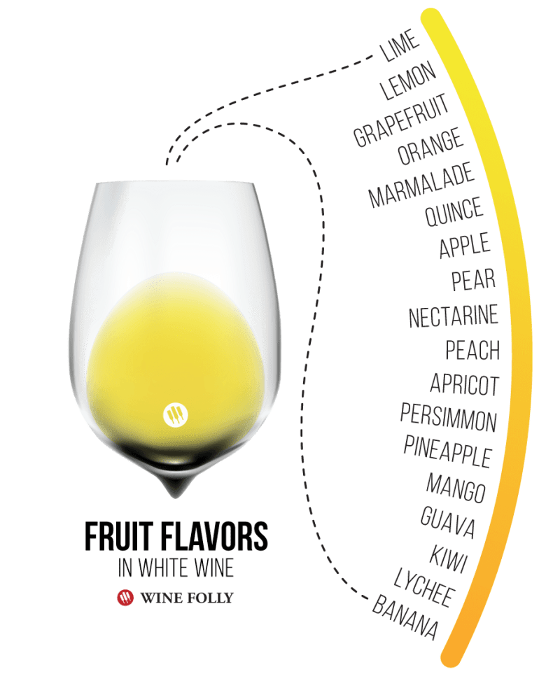 Common Fruit Flavors Found in White Wine - Infographic by Wine Folly