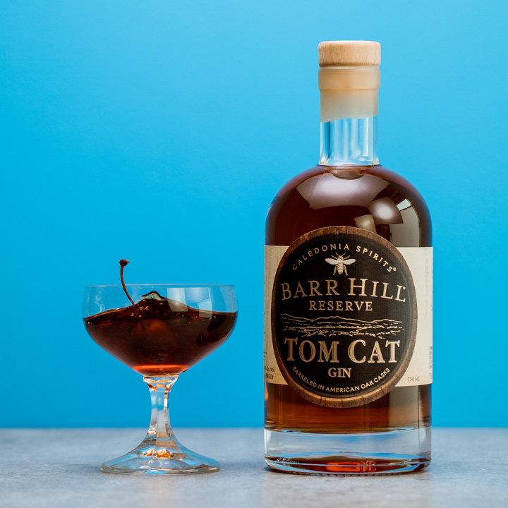 Bar-barr-hill-reserve-tom-cat