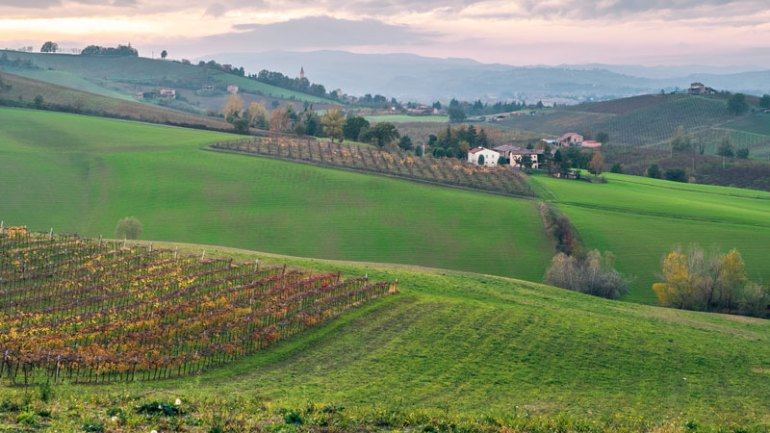 Pignoletto is a Bright, Bracing Italian Sparkler That Could Dethrone Prosecco