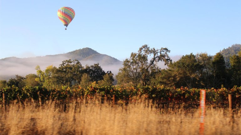 Napa Valley is one of the best wine vacation destinations!