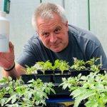 james-hocking-with-tomato-plants