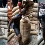 Ghanaian man raises a heavy bag of Cocoa seeds with his teeth